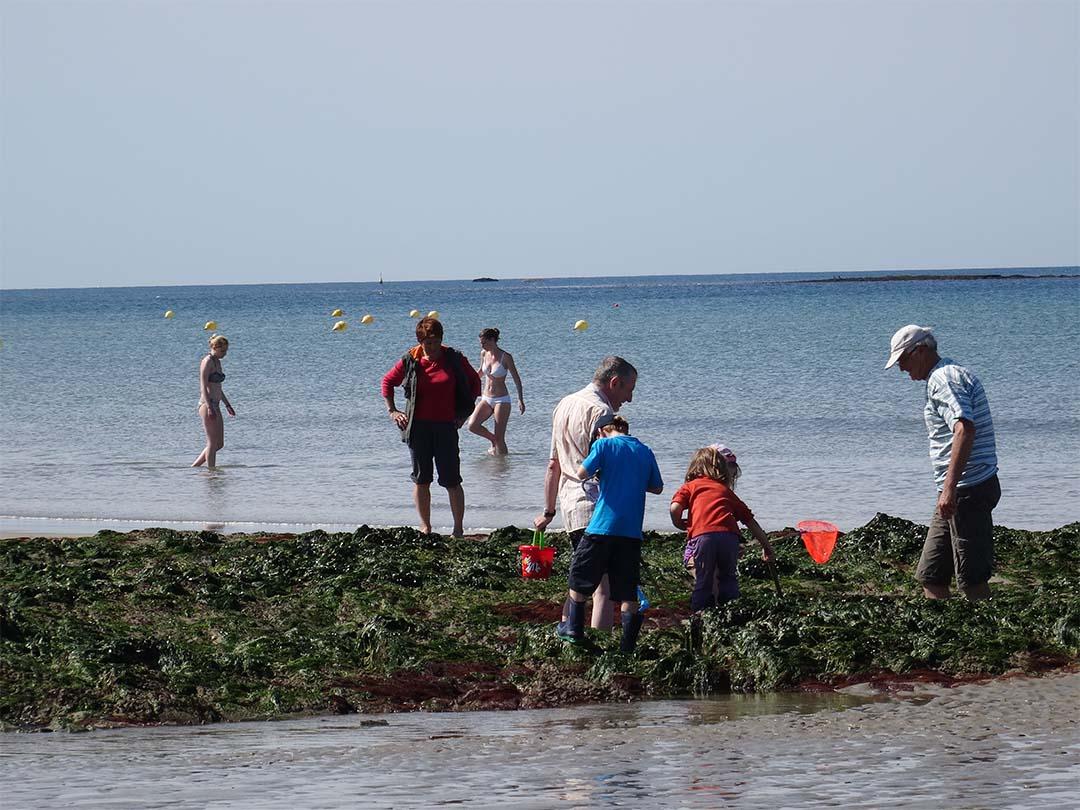 Pêche à pied Guidel proche Lorient