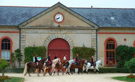 Haras national de Hennebont